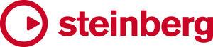 Steinberg company logo
