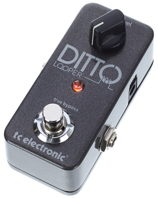 TC Electronic Ditto